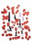 Sada Adventurous Anal Starter Kit nabízí skvělou možnost objevovat skryté anální potěšení. Sada obsahuje několik kvalitních análních hraček, jako je vibrační a nevibrační anální kolík, anální stimulát…
